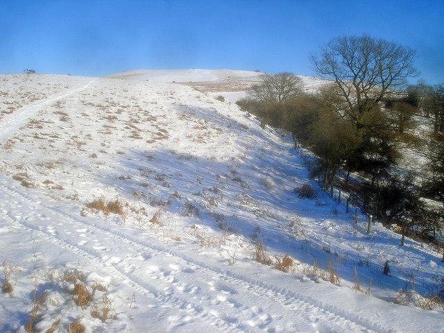 The Hergest Ridge - geograph.org.uk - 1724238