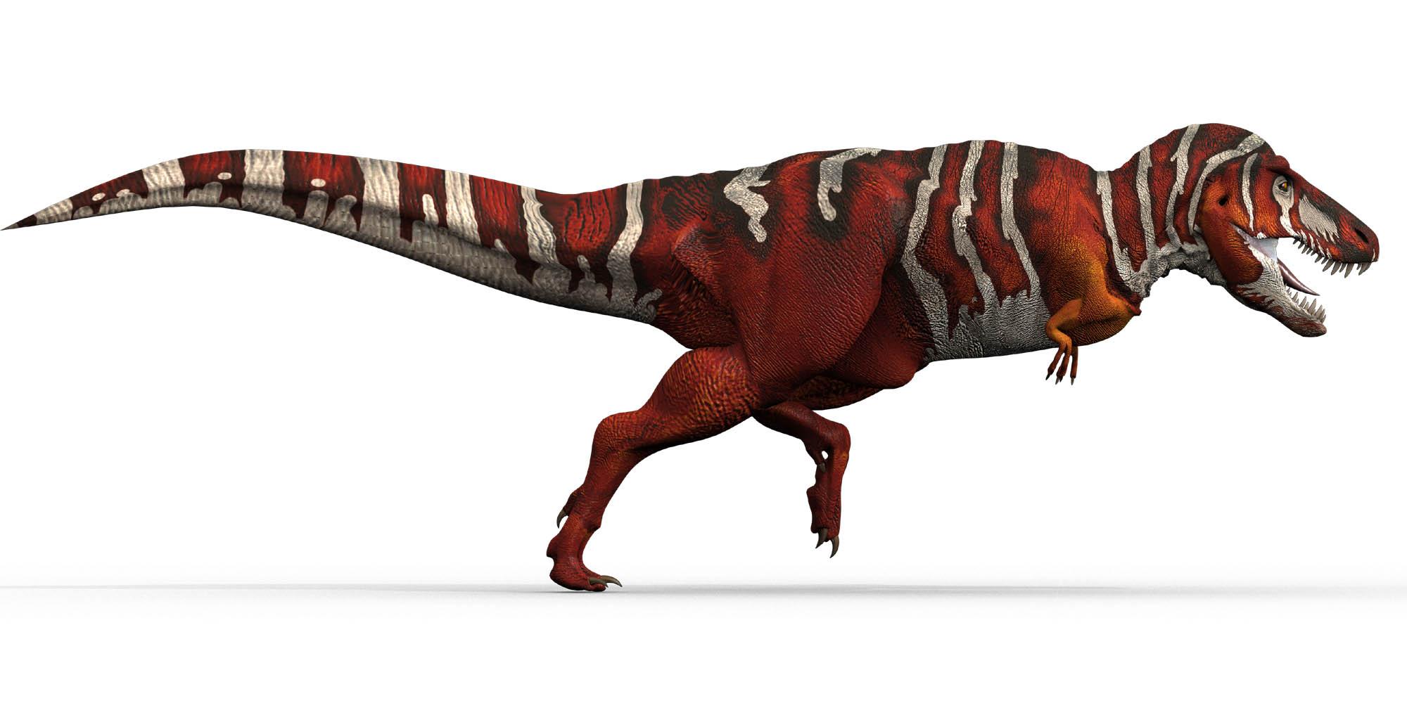 Dinozaury - photo#28