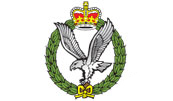 UK Army badge.JPG