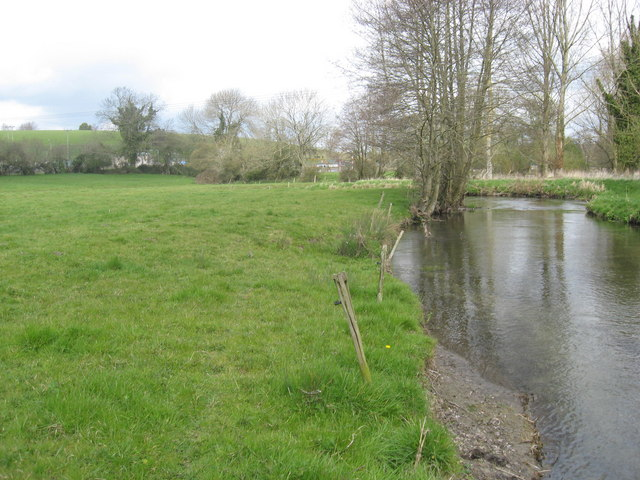 Water meadows beside the River Wylye - geograph.org.uk - 1238295