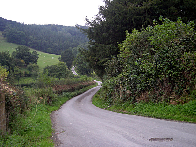 Winding Lane (NCR 81) - geograph.org.uk - 967272