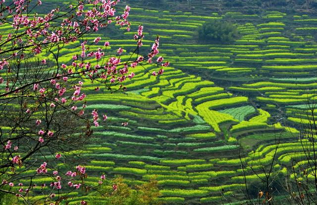 Wuyuan huangling scenery