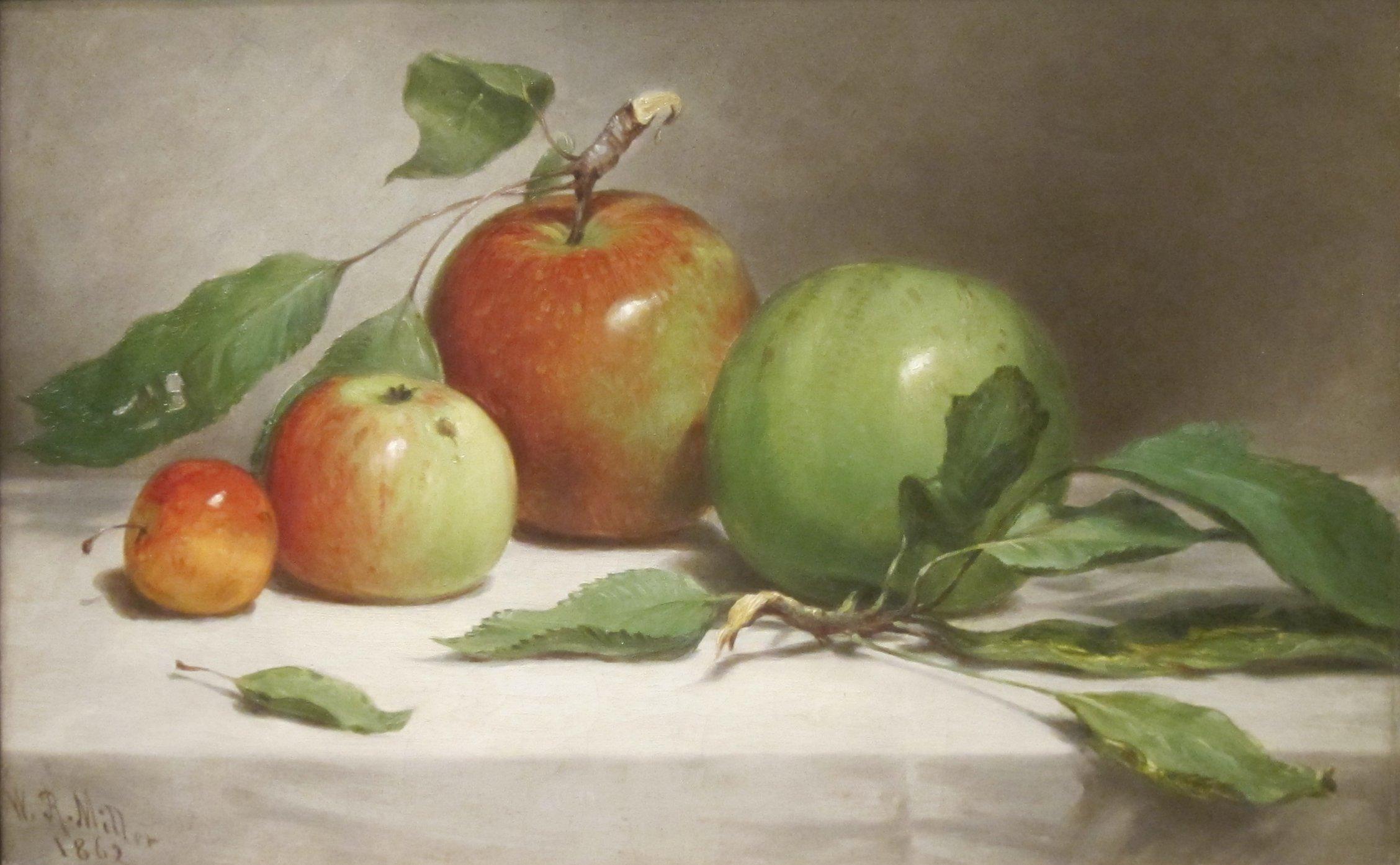 filestill lifestudy of apples by william rickarby