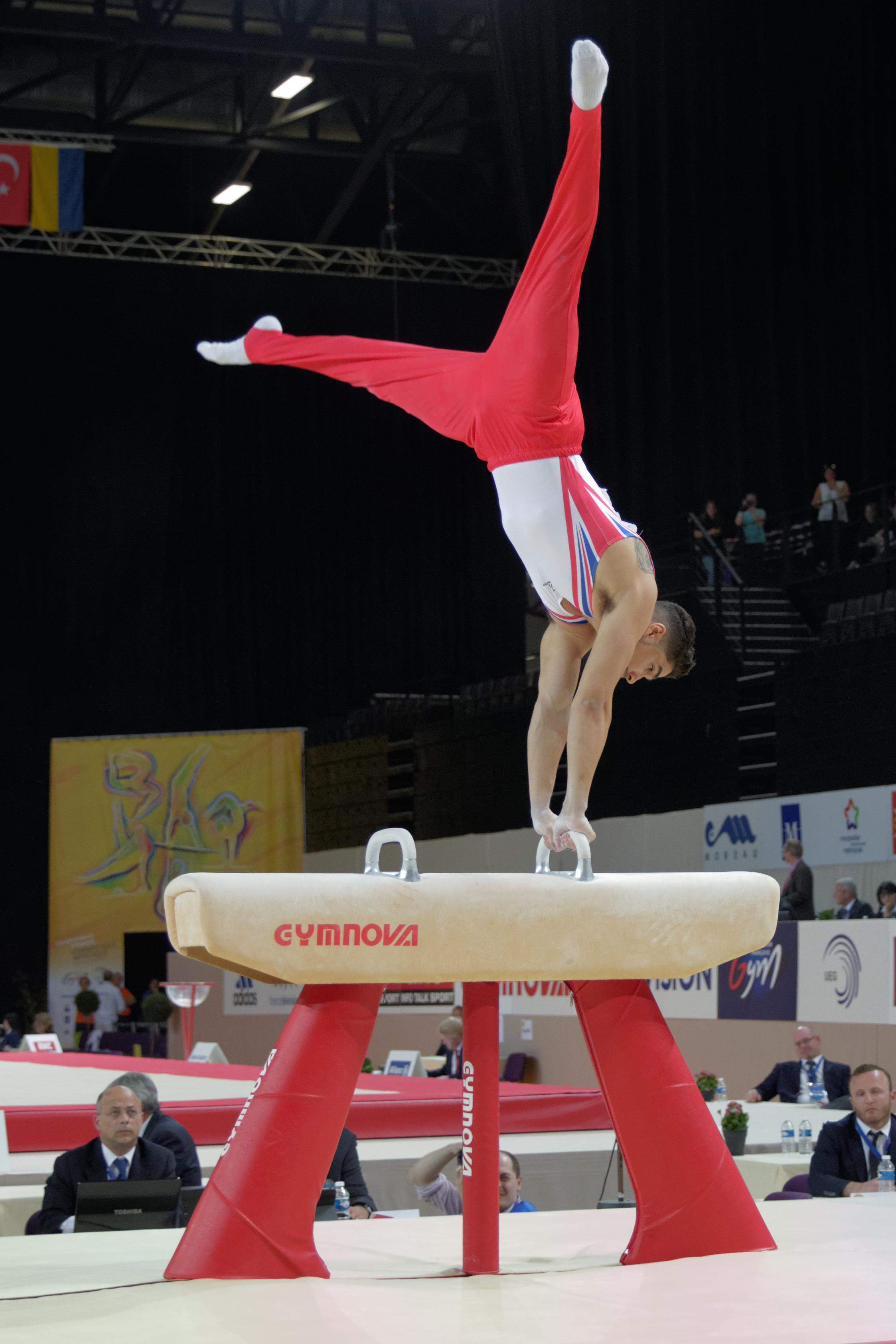 file 2015 european artistic gymnastics championships pommel horse