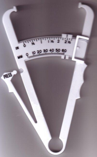 Durchschnittlicher Körperfettanteil