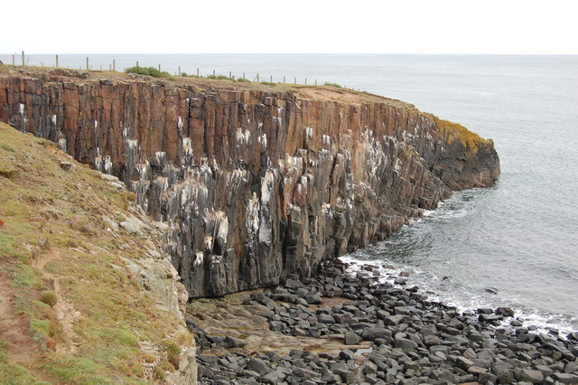 Cullernose Point - geograph.org.uk - 746384