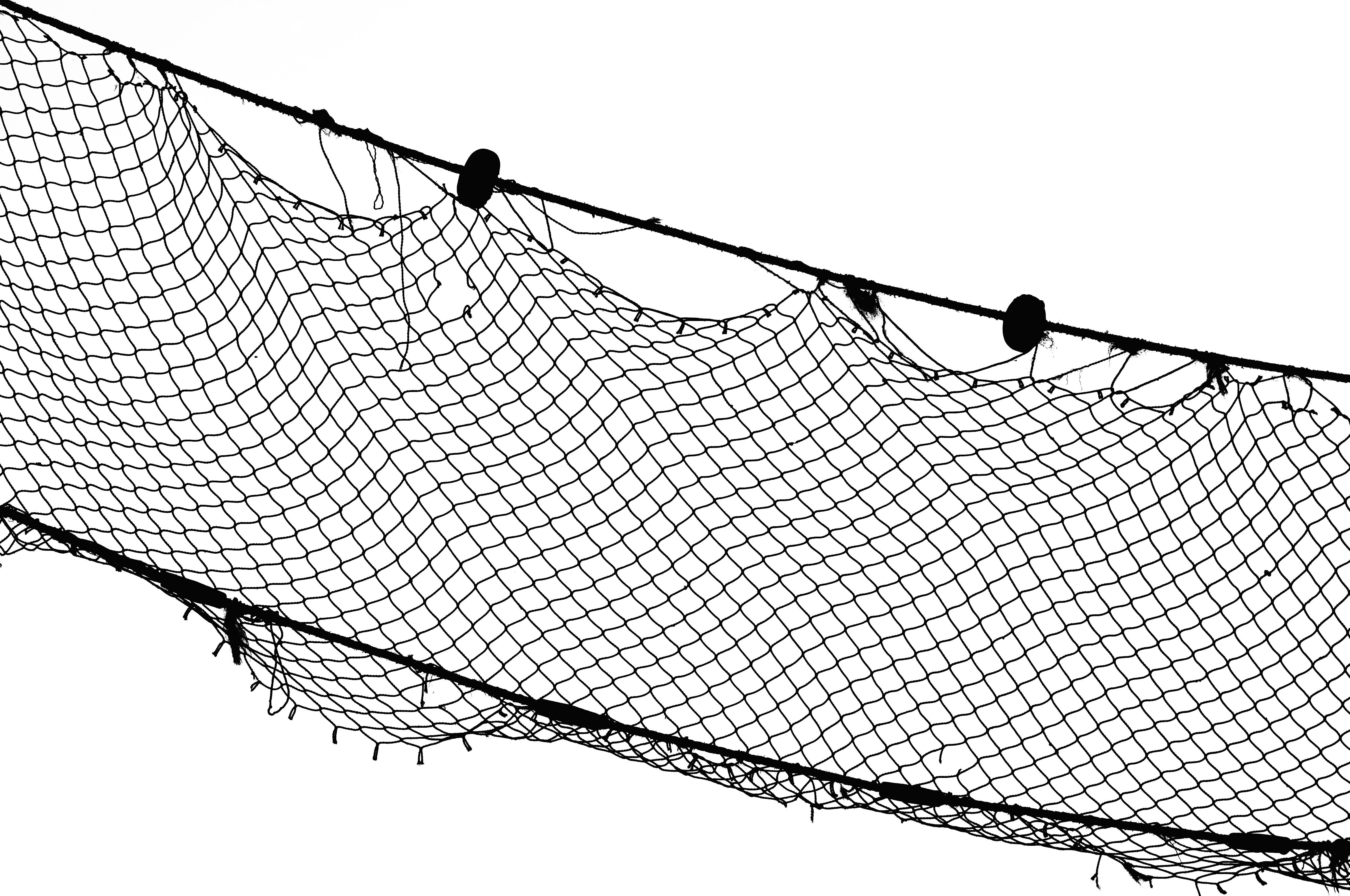 filefishing net imgp8396jpg