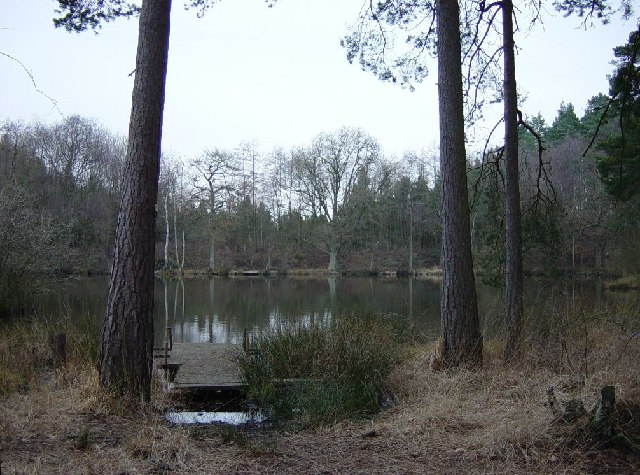 Island Pond, Buchan Country Park - geograph.org.uk - 117264