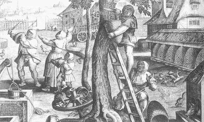 Wiejska pasieka - Jan van der Straet
