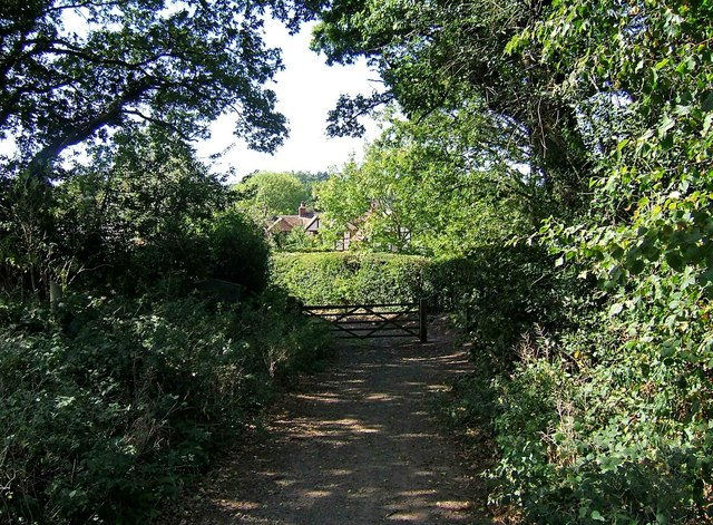 Looking back at the entrance to Shrawley Wood - geograph.org.uk - 1484844