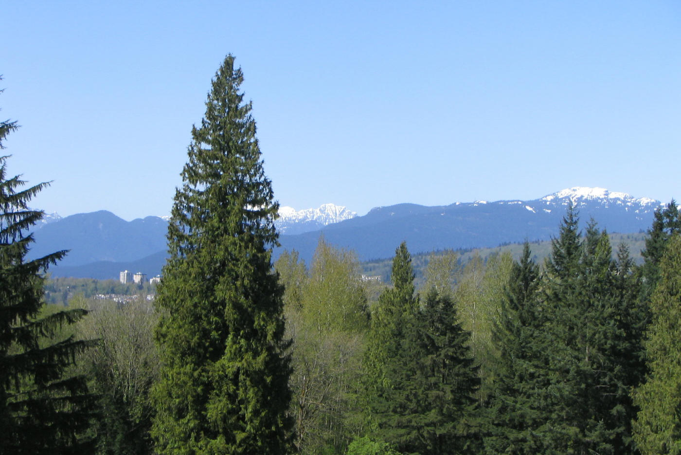 File:Montecito Cathedral Mtn & Mt Seymour from Robert Burnaby Park