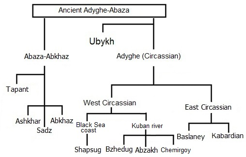 File:Northwest Caucasian Family Tree.JPG