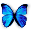 Padre logo (64x64).png