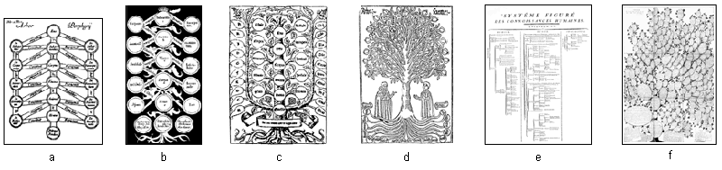Porphyrian and derivated trees gallery small.png