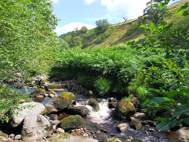 Posforth Gill beck - geograph.org.uk - 517322