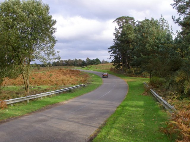 Road to Bolderwood from Slufters Inclosure, New Forest - geograph.org.uk - 267589