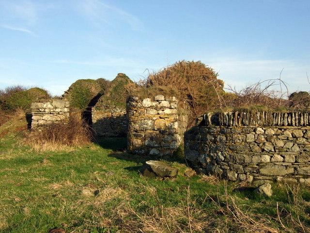 Ruin above Abermawr - geograph.org.uk - 685866
