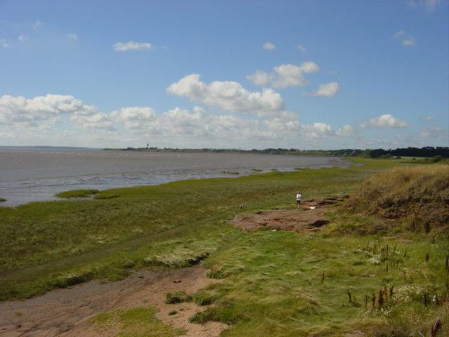 Saltmarsh and mudbanks at Hale point - geograph.org.uk - 40613