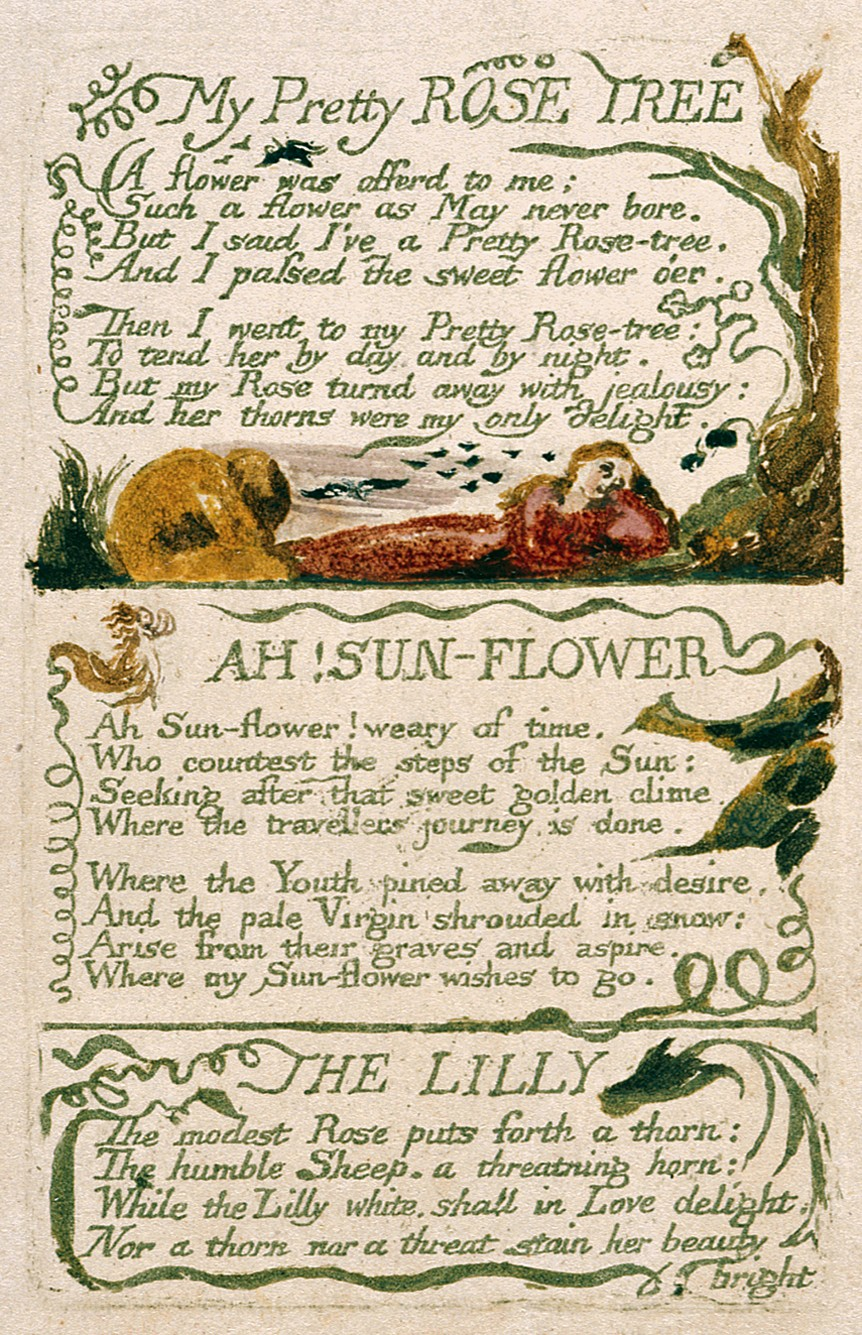 summary of the poem spring by william blake