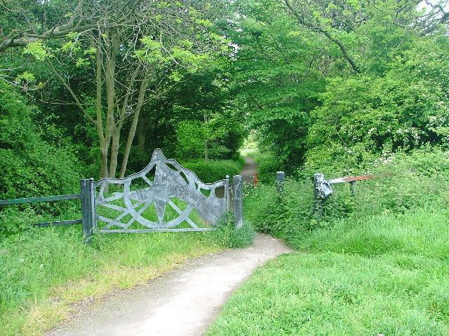 Tees Link Footpath - geograph.org.uk - 12650