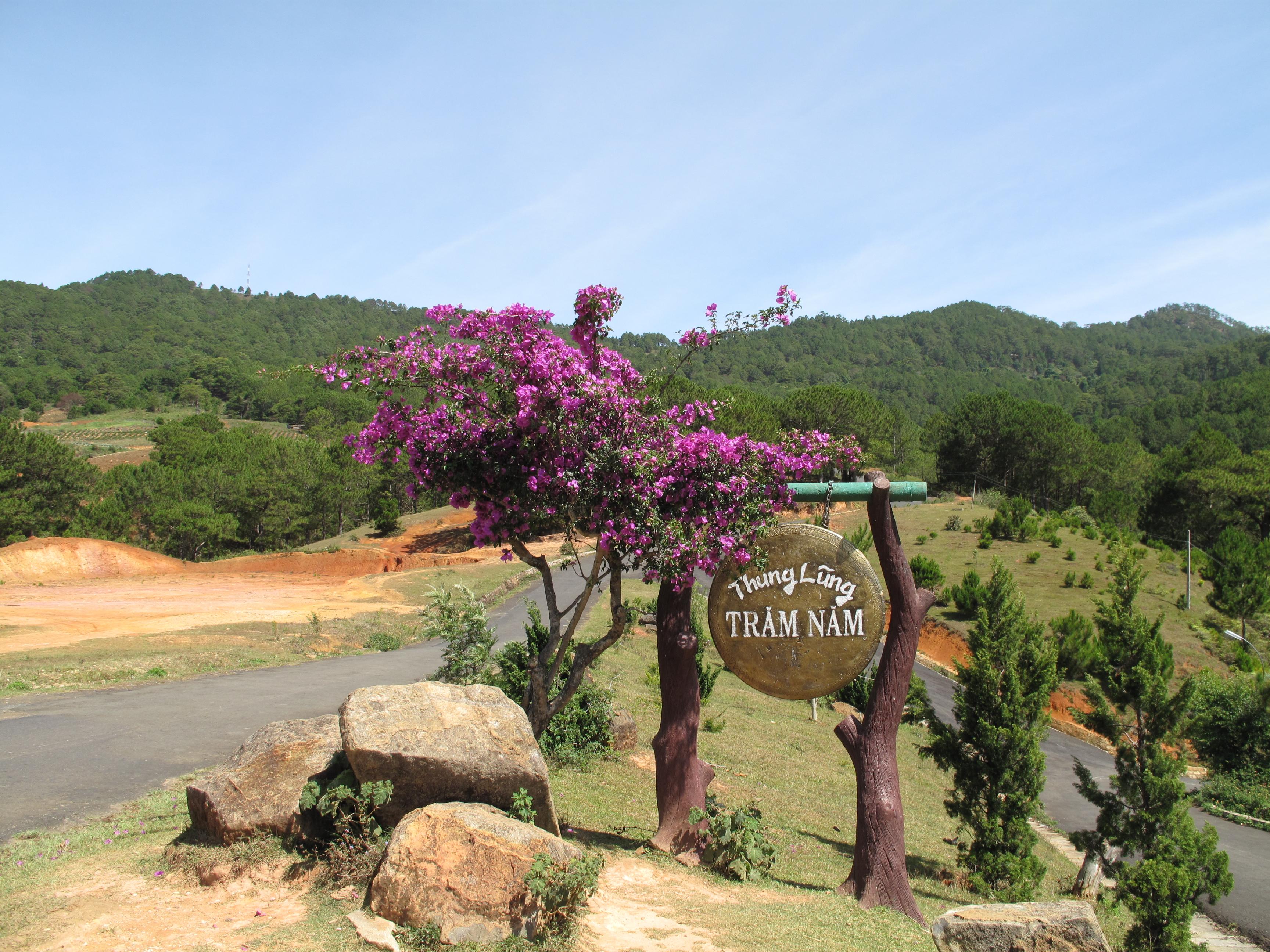 Tập tin:Thung Lung Tram Nam.JPG – Wikipedia tiếng Việt