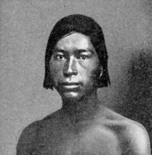 Datei:Young Chickasaw warrior.jpg