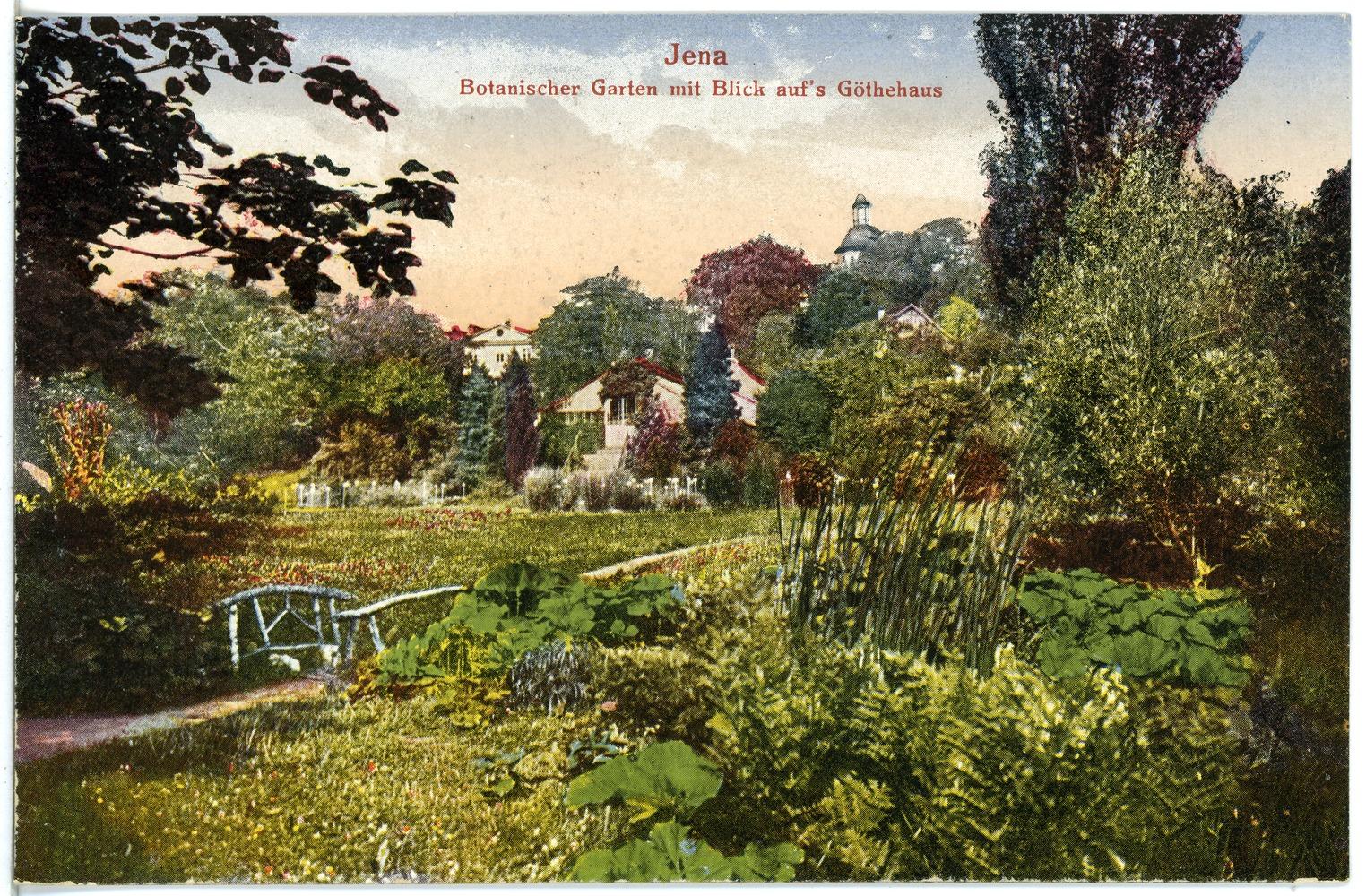 File21223 Jena 1919 Botanischer Garten Brück Sohn Kunstverlagjpg