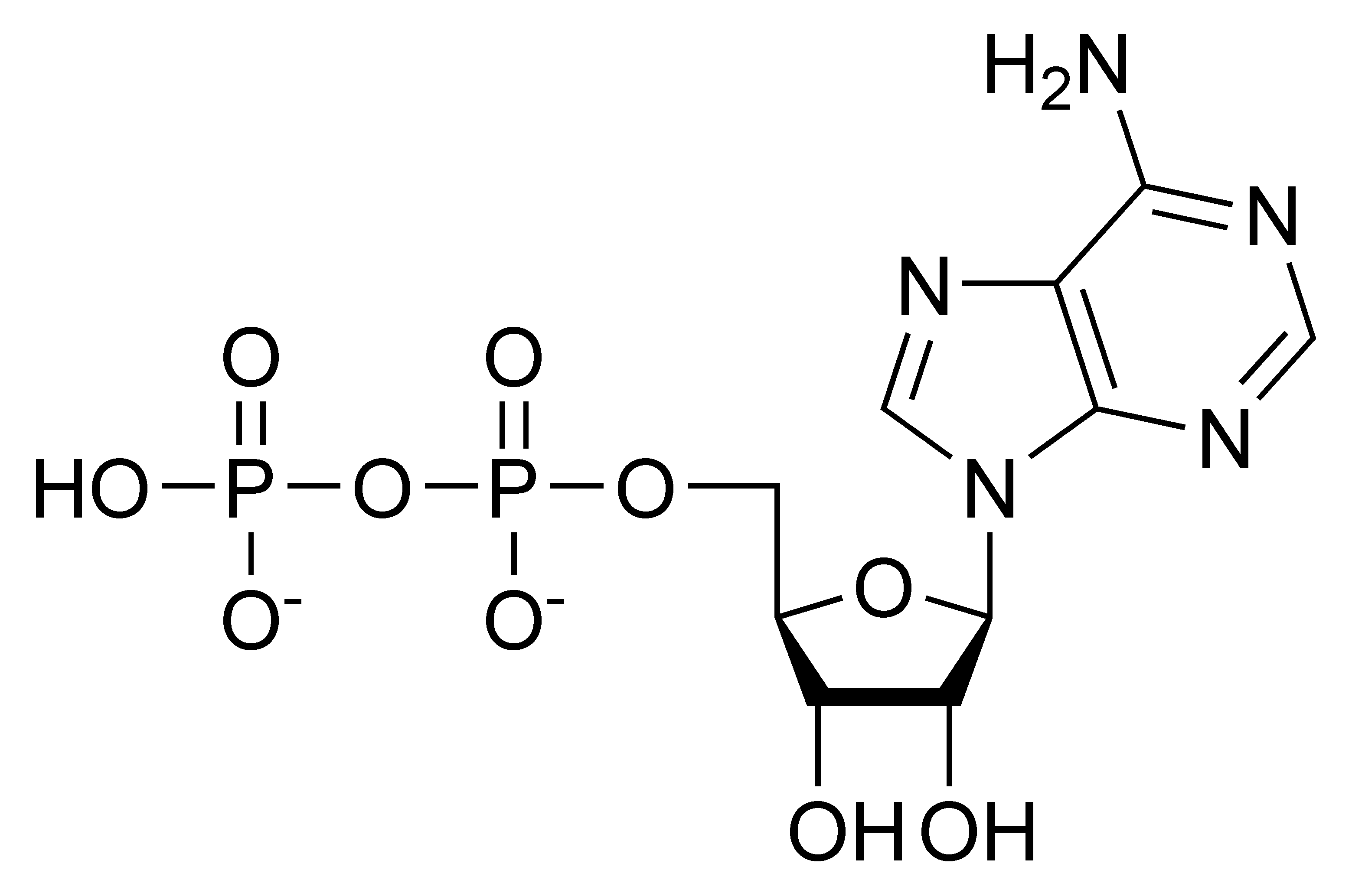Chemical structure of adenosine diphosphate