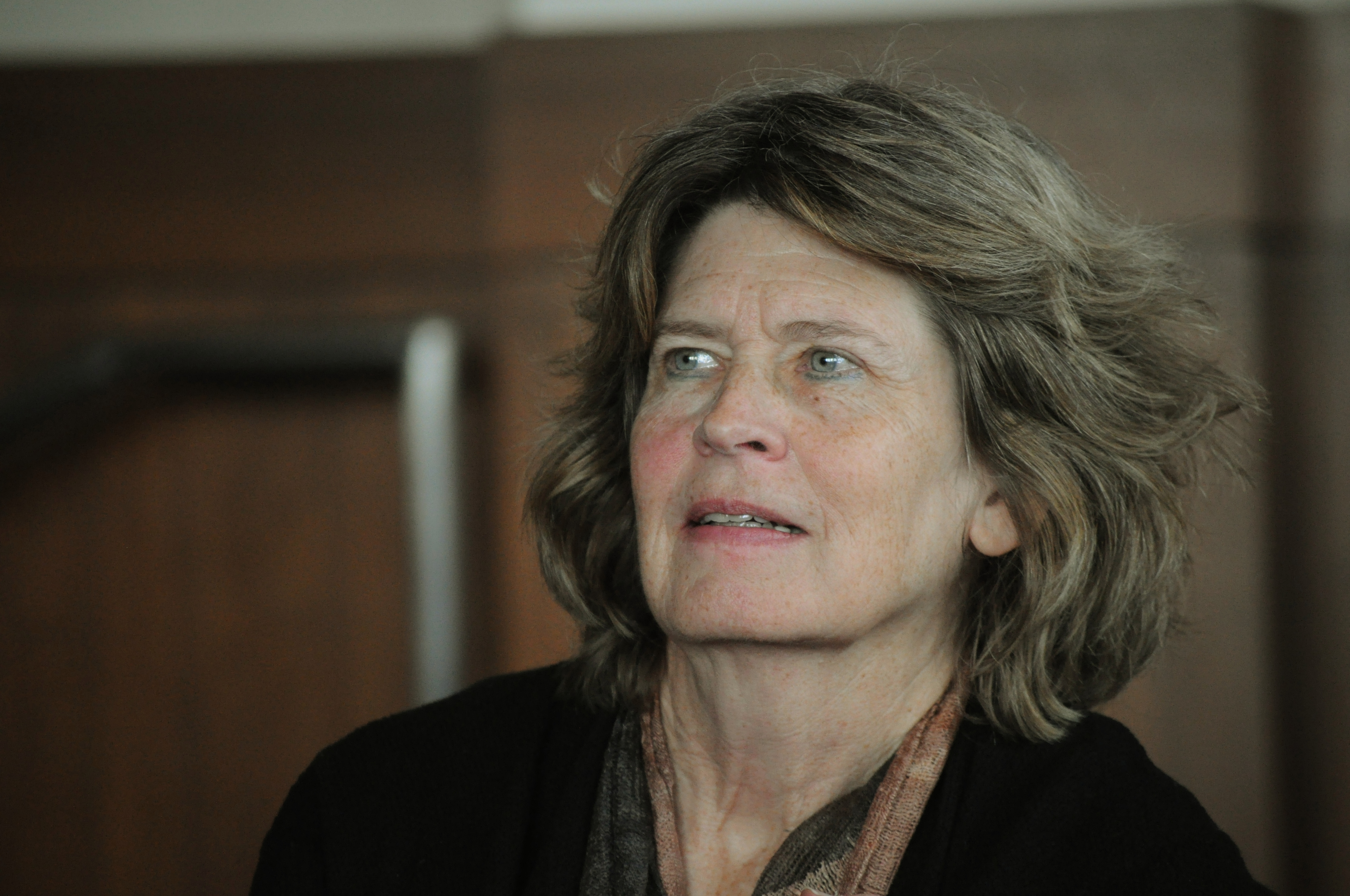 Alice Echols, 2011