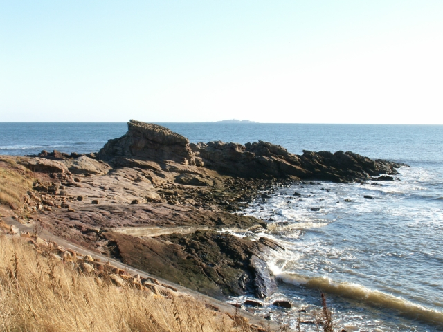 Description Billow Ness by Anstruther - geograph.org.uk - 77969.jpg