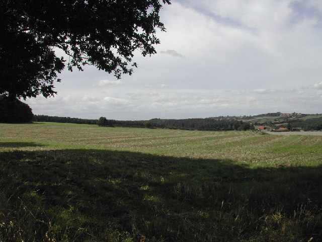 Blidworth Bottoms - geograph.org.uk - 42010