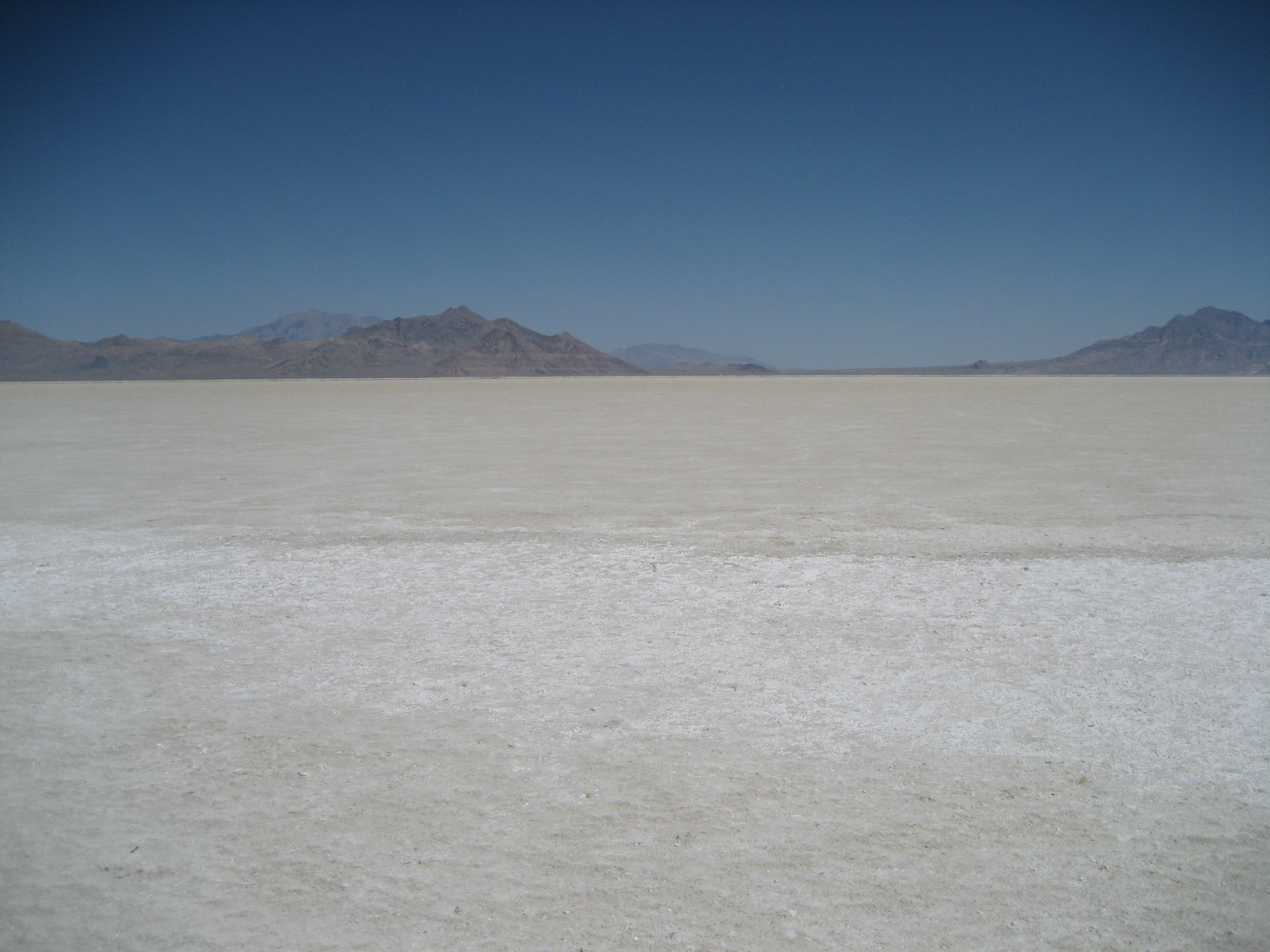 salt flat chat rooms Cancellation of race renews fears of shrinking salt flats  drawing hundreds of  teams and filling restaurants and hotel rooms in the nearby.