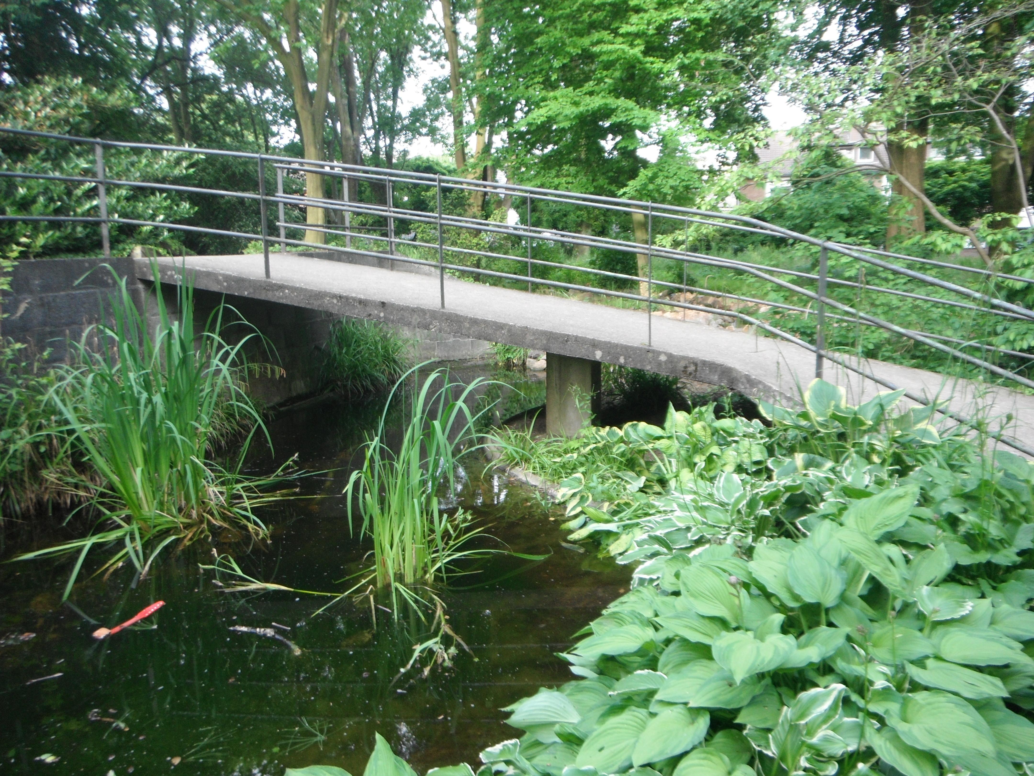 Fabelhaft Botanischer Garten der Stadt Neuss – Wikipedia &XA_86
