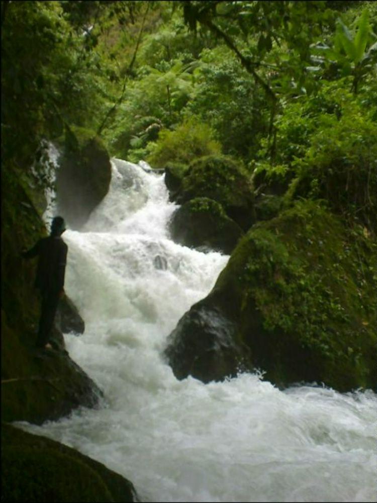 Hutan Larangan Hulu Sungai Cibeet - Wikipedia bahasa Indonesia, ensiklopedia bebas