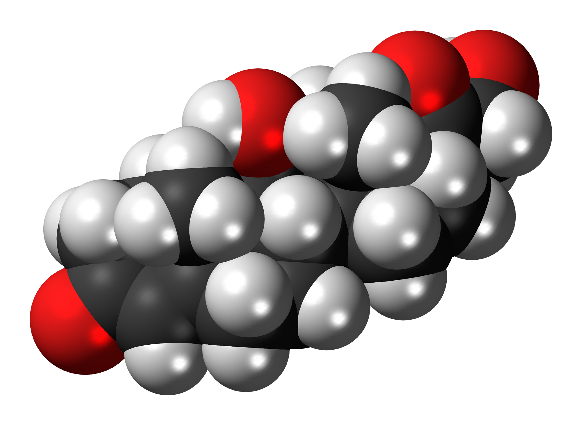 File:Cortisol-3D-spacefill.png
