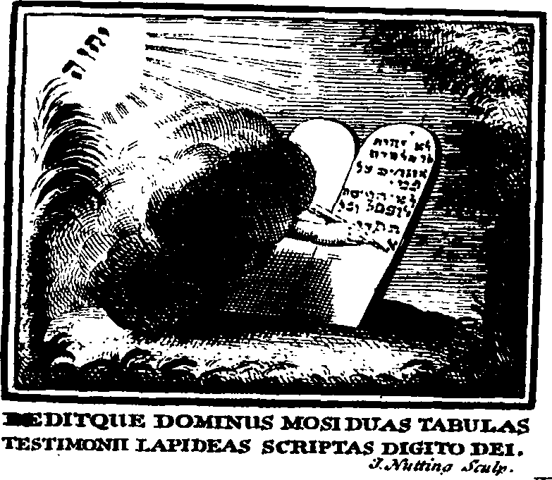 De literis inventis libri sex Fleuron T149874-1.png English: Fleuron from book: De literis inventis libri sex. Ad Illustrissimum Principem Thomam