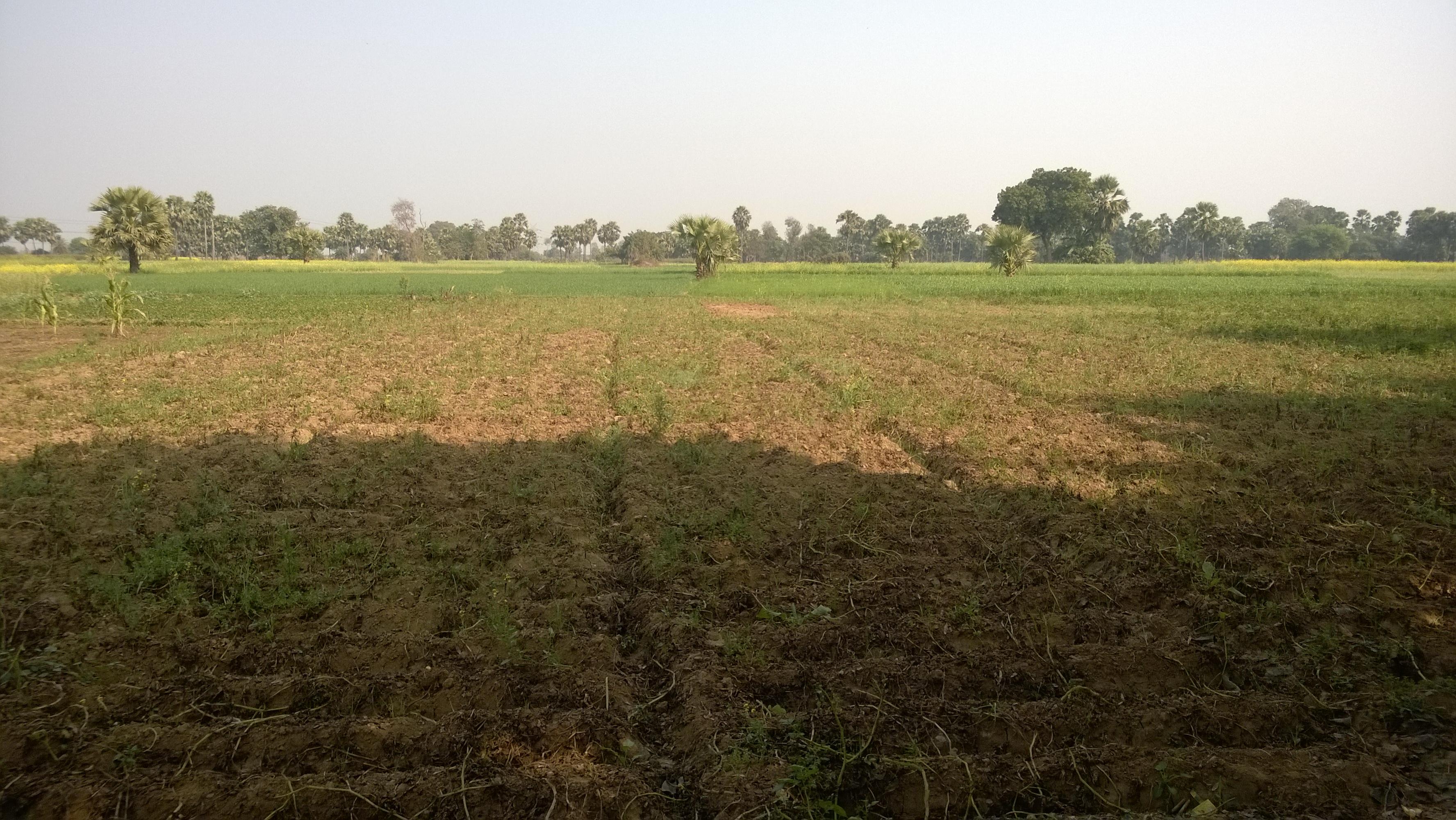 Bihar Sharif - Wikiwand