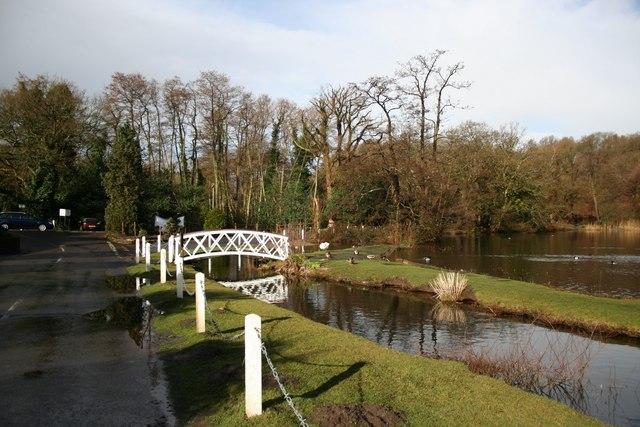 Frensham Great Pond - geograph.org.uk - 725170