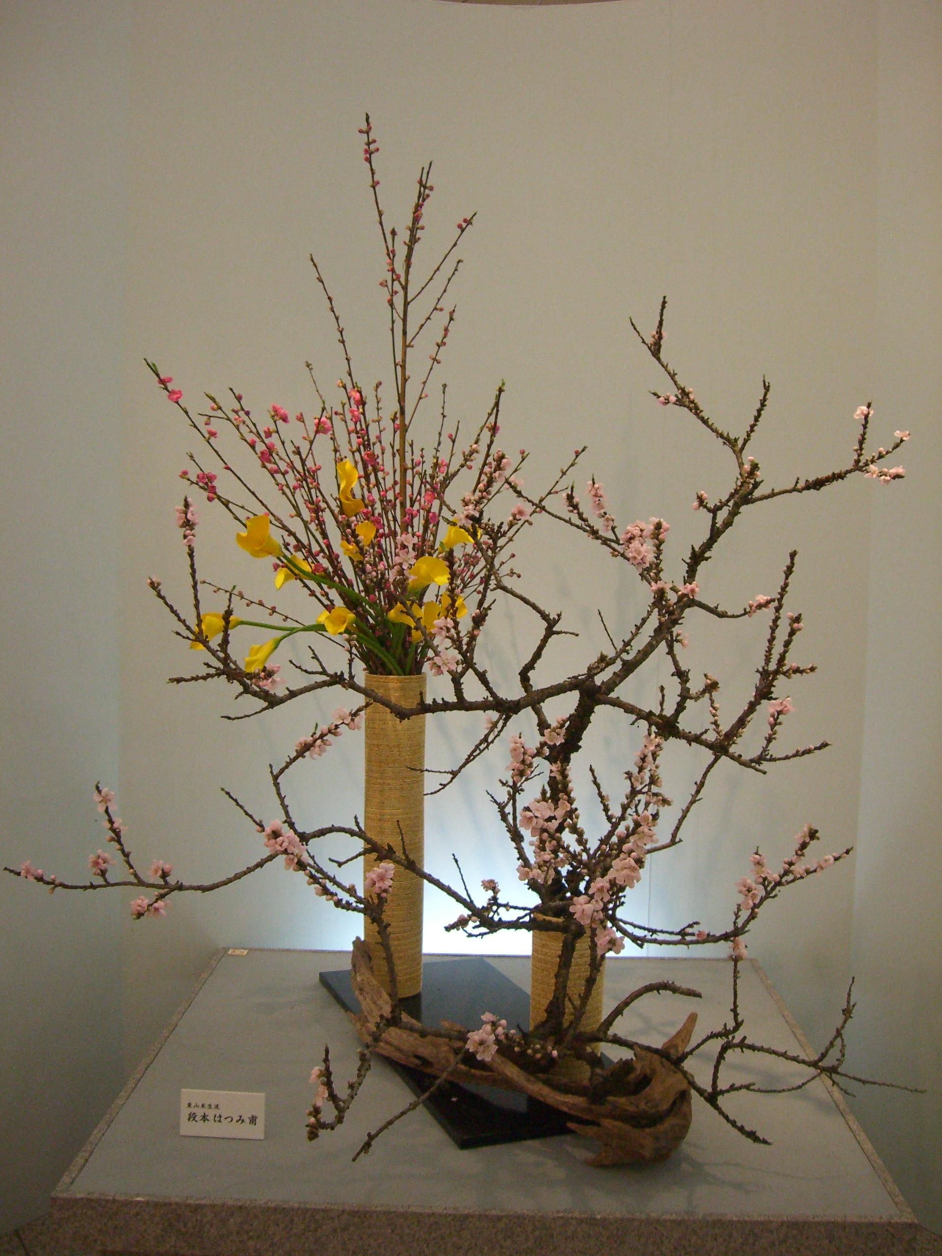 File ikebana japanese flower arrangement いけばな