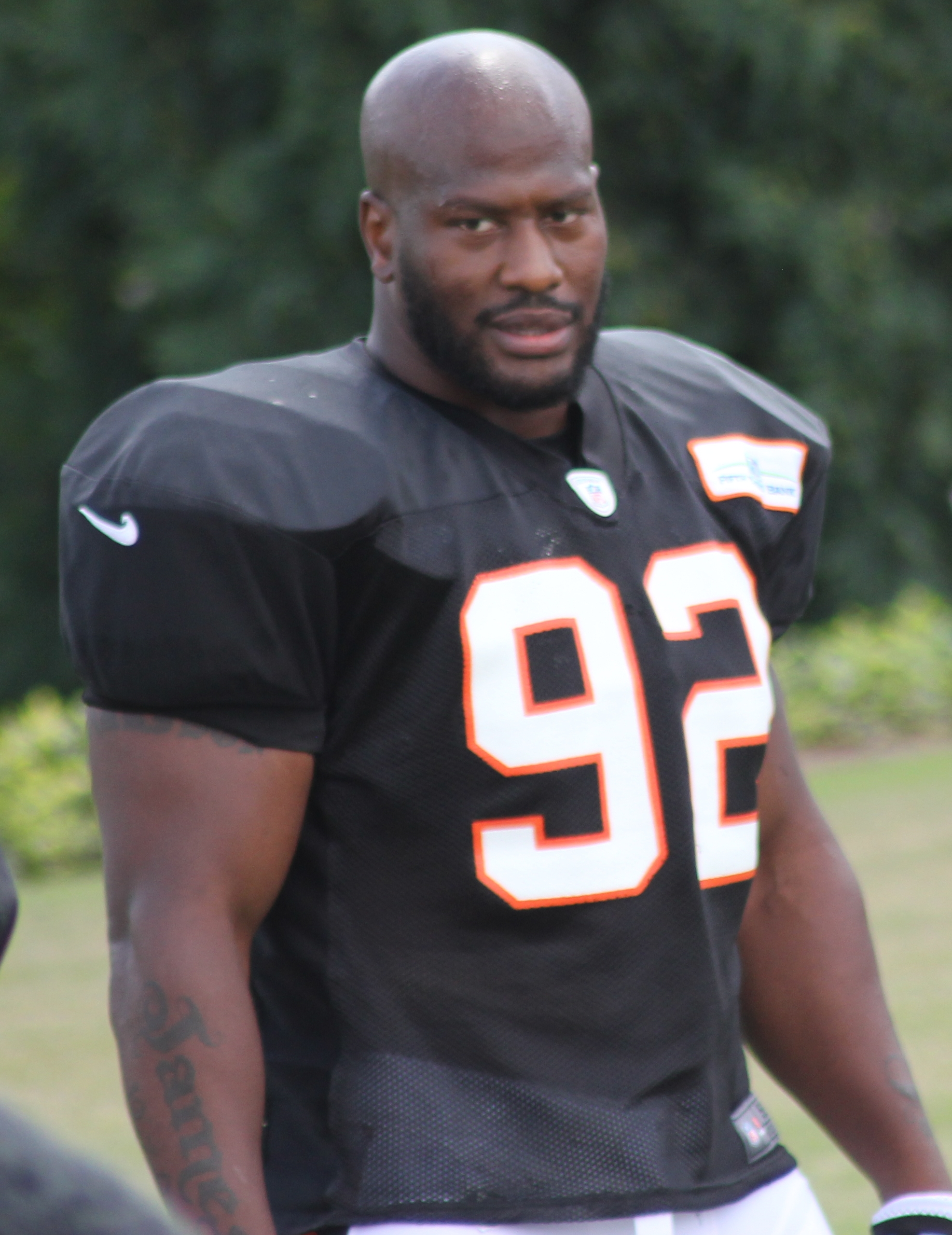 7d39ea271 James Harrison (American football) - Wikipedia