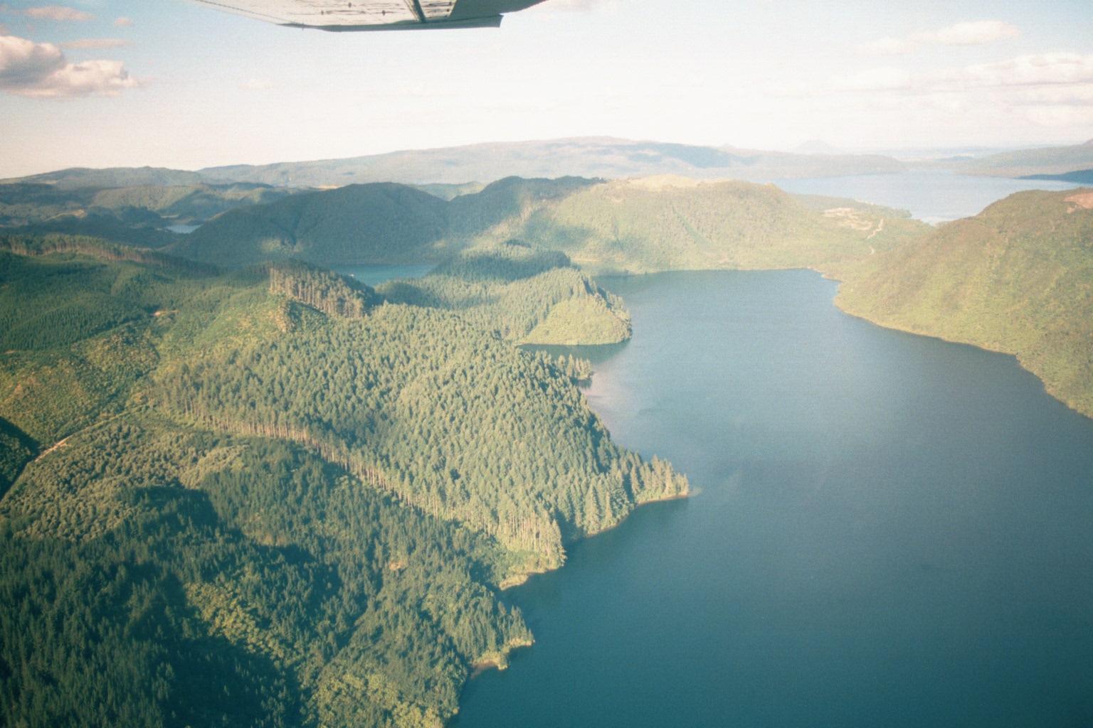 Lake Okareka walks