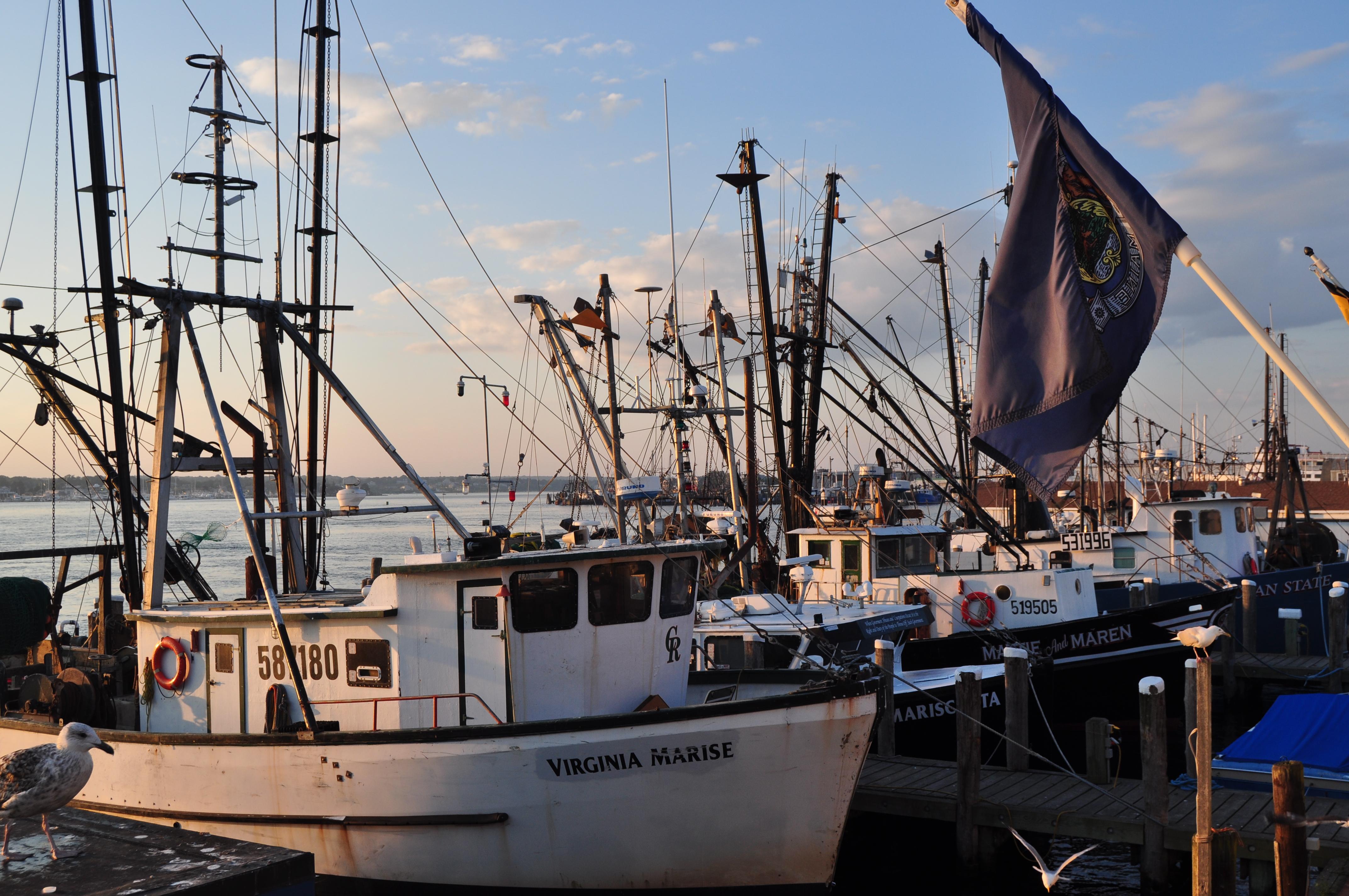 File:Lobster boats in Port of Galilee, RI.JPG - Wikimedia ...
