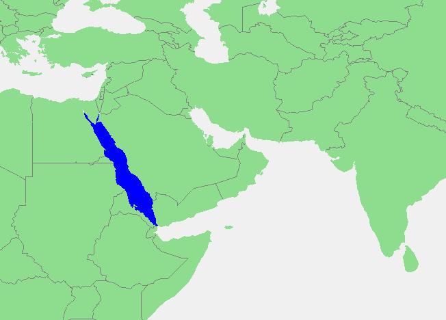 Locatie Rode Zee