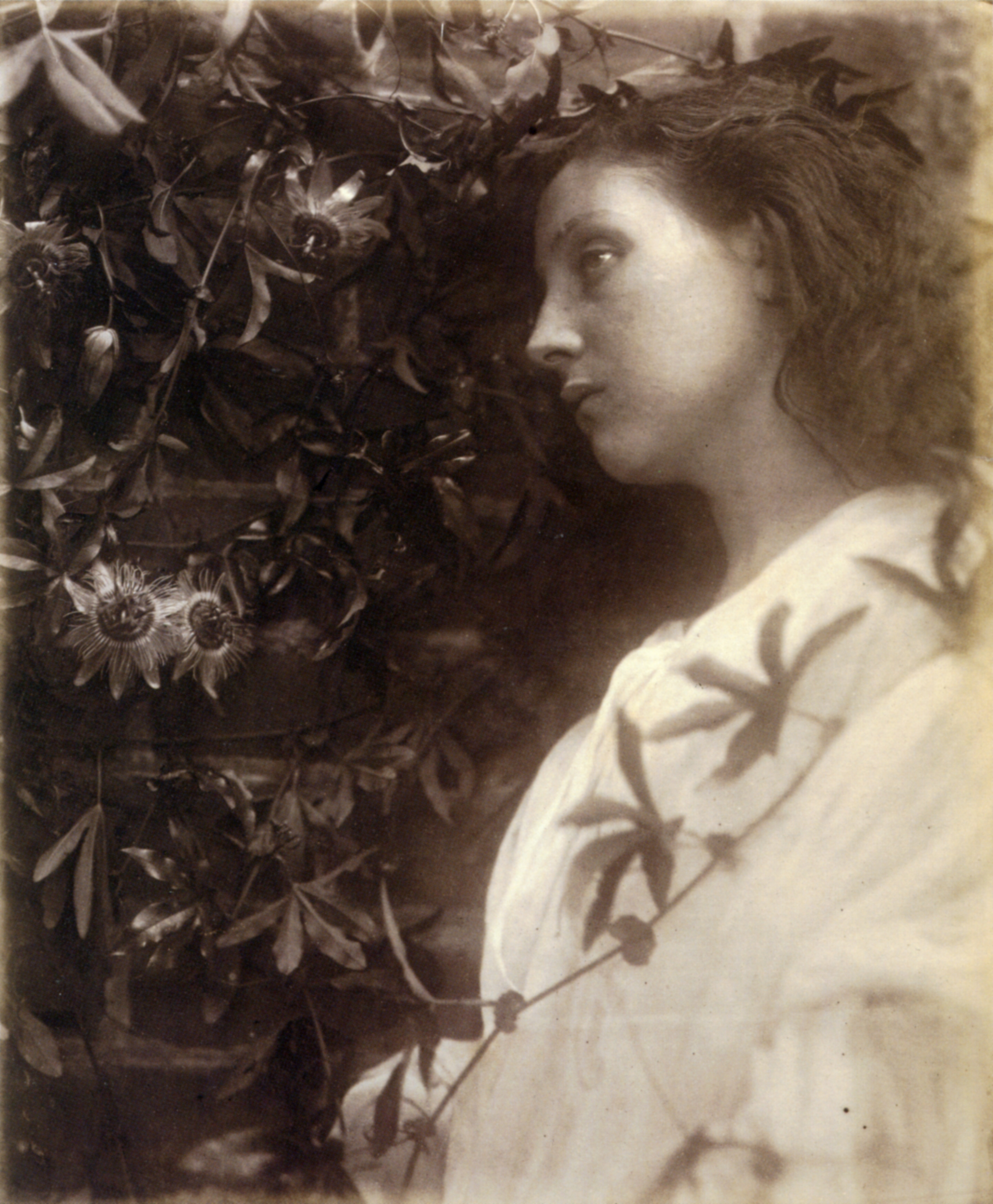 http://upload.wikimedia.org/wikipedia/commons/0/06/Maud%2C_by_Julia_Margaret_Cameron.jpg