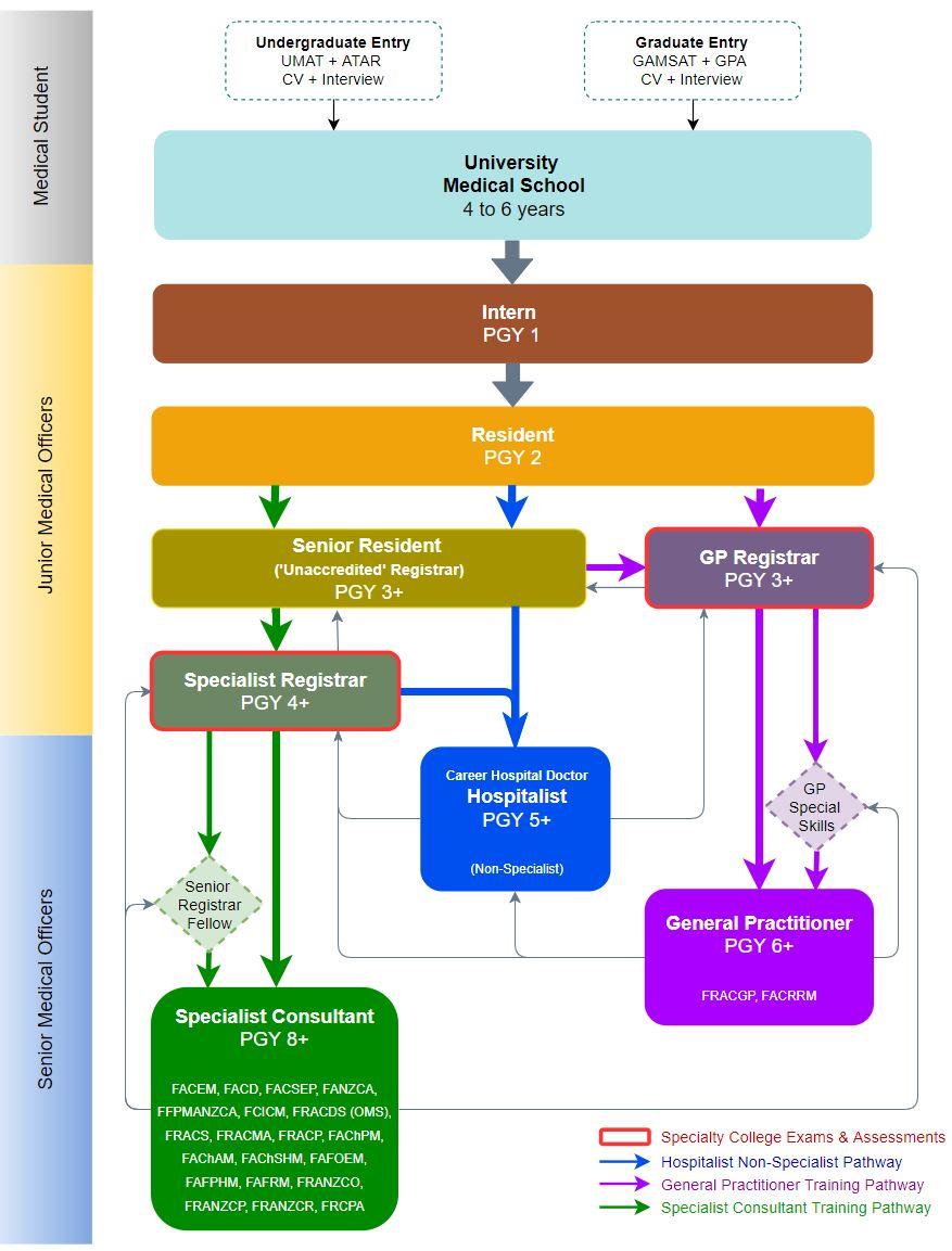 Medical education in Australia - Wikipedia