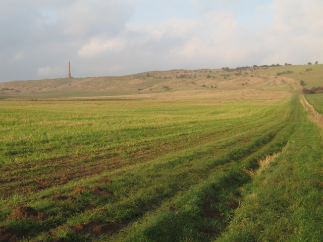 On the White Horse Trail to Oldbury Castle - geograph.org.uk - 300073