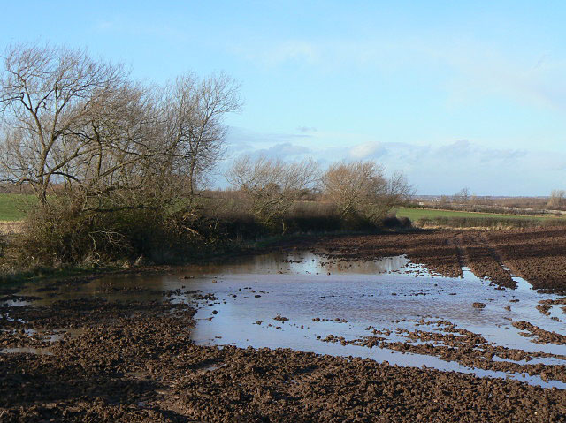 Standing water - geograph.org.uk - 1608755