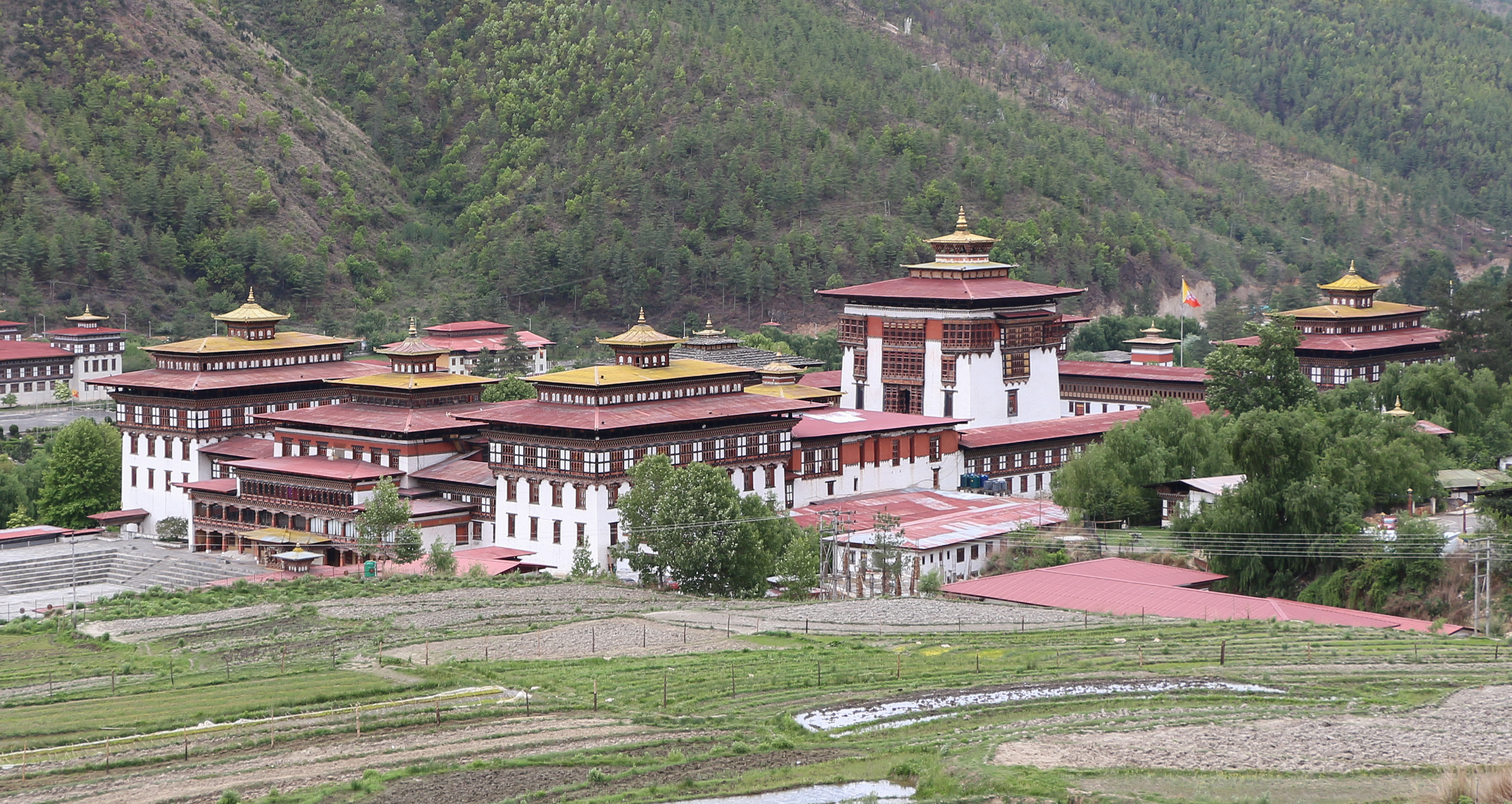 elevation of thimphu bhutan