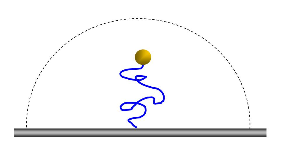 Tethered_particle_motion_sketch.JPG