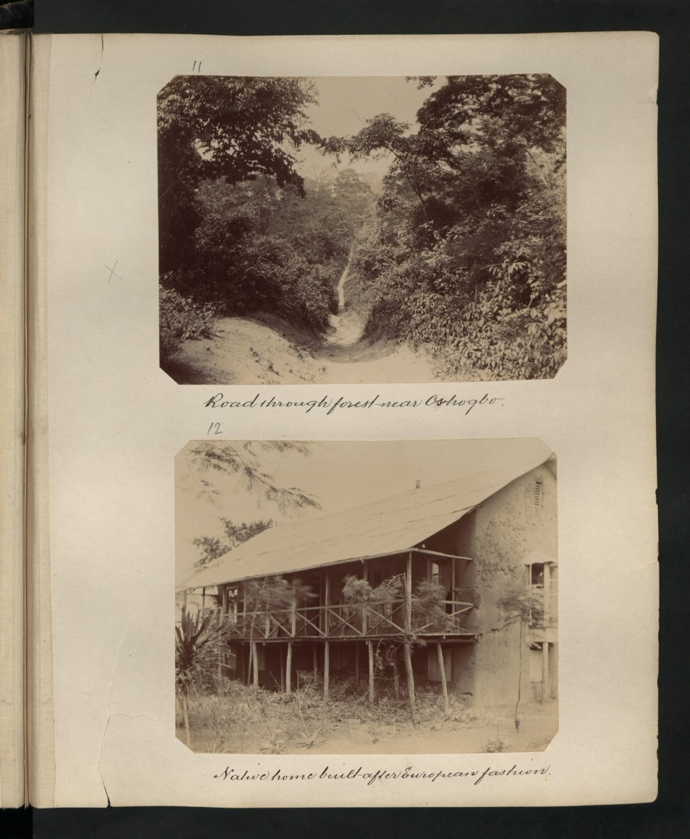 forest near Oshogbo. Location: Oshogbo : Native home built after European fashion. Our Catalogue Reference: Part of CO 1069/80 This image is